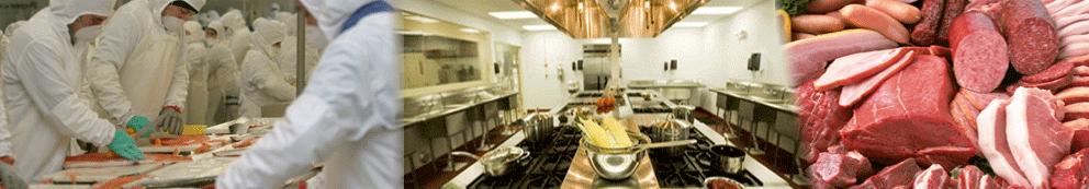 termometro digital para procesamiento de alimentos y cocina profesional